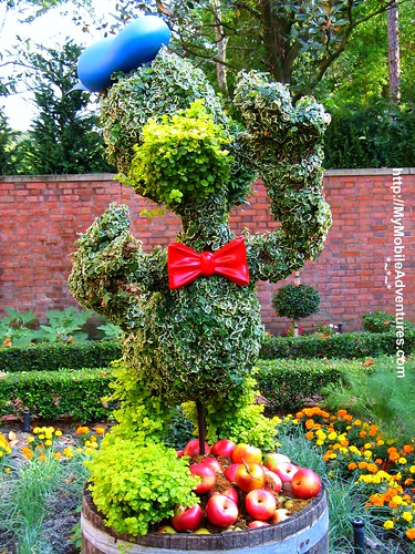 IMG_0210-EPCOT-Donald-Duck-topiary