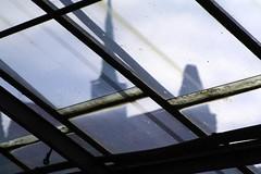 tu wrocaw (Leszek Golubinski) Tags: distortion church glass poland stained botanicgarden glasshouse 2010 szko wrocaw stcross ogrdbotaniczny szklarnia kociwkrzya brudek znieksztacenie