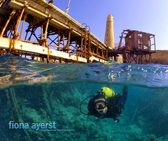 Red Sea Dive Pro Educational tr (Fiona Ayerst) Tags: jetty redsea dive scuba overunder brothersisland fionaayerst