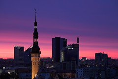 Dawn over Tallinn