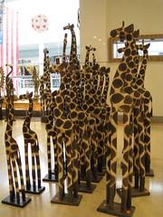 Giraffe's Proud to be American (Leya :P) Tags: usa yellow flag marching giraffe usflag goldstaraward