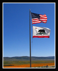 california wind flag americanflag poppies antelopevalley poppyreserve digifotopro