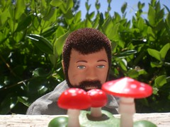 HALLUCINOGENIC ADVENTURER (8 Skeins of Danger) Tags: blue red wild sky man green leaves wow beard gijoe mushrooms see team fuzzy joe adventure thats streaks shrooms gi hallucinogenic repro i 8skeinsofdanger