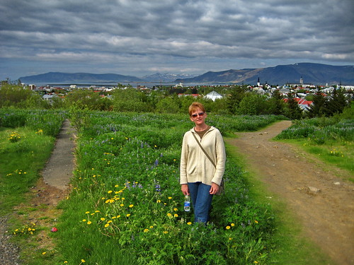 Lupine-field-overlook