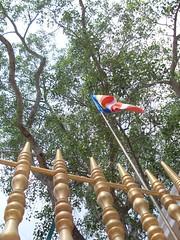 Sri Maha Bodiya (Dinesh Deckker (dineshdsd@gmail.com)) Tags: flowers statue forest temple monkey pond scenery king tank stupa buddhist srilanka arial dambulla anuradhapura srimahabodi jethawanaramaya anuradapura dutugamunu ruwanvelisaya thuparamaya nelikulama