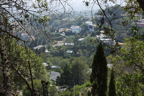 From Hollywood Hills