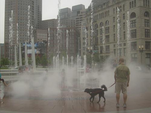 ...Boston'water'show...