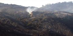 2008_07_06_gapfire_08 (dsearls) Tags: california mountains santabarbara fire santaynez southcoast wildfire goleta santaynezmountains goletaca anthropocene sbgapfire gapfire