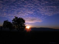 Sunset (Oly d'Stanne) Tags: chile blue sunset sky azul clouds arbol atardecer cerro cielo nubes puestadesol tarde aconcagua losandesvacaionesdeinvierno