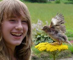 Girl meets bird (e) Tags: portrait girl smile sarah ilovenature daughter wing natuur sparrow portraiture mus laugh conversation tuin bye waving portret handicapinternational greeting meisje dochter vleugel duizendblad naturepix kidsandanimals kadodder groet sa3000 gepluktkieken zusenmus onzemus
