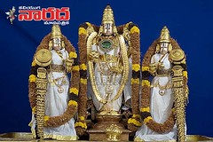 malayappa_with_deveari (lordsrivenkateswaraswamy) Tags: india god lord balaji tirupati tirumala chiranjeevi venkateswara srinivasa suryanaidus