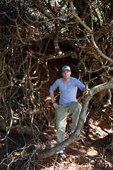 Me in a Tree (eivindb) Tags: beach australia portmacquarie