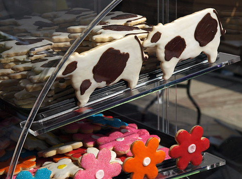 Cow Cookies from Wisconsin