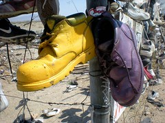 Purple & Gold (See El Photo) Tags: sky color colour colors basketball yellow fence lost outside shoe gold colorful colore purple desert bluesky dirt hightops abandonded sneaker multiple multicolored lakers farbe couleur lostshoe laces hung clearsky leftbehind  basketballshoe   abandondedshoe abandondedsneaker