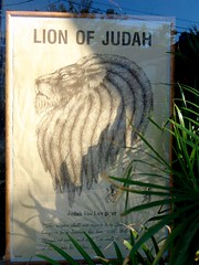 Lion of Judah (justiNYC) Tags: window poster lion judah rasta