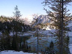 Lewis and Larch