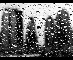 Drops of Coal (ecstaticist) Tags: blackandwhite bw canada macro water glass rain vancouver plane bc drop casio condo refraction otter droplet inversion windshield float coalharbor optics exf1