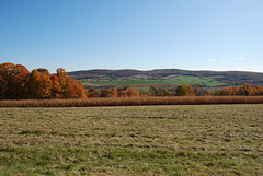 Scenery along US44