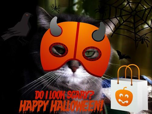 Happy Halloween from Kashim