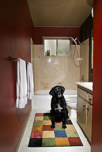 Bathroom Paint Ideas - Bathroom Ideas - Zimbio