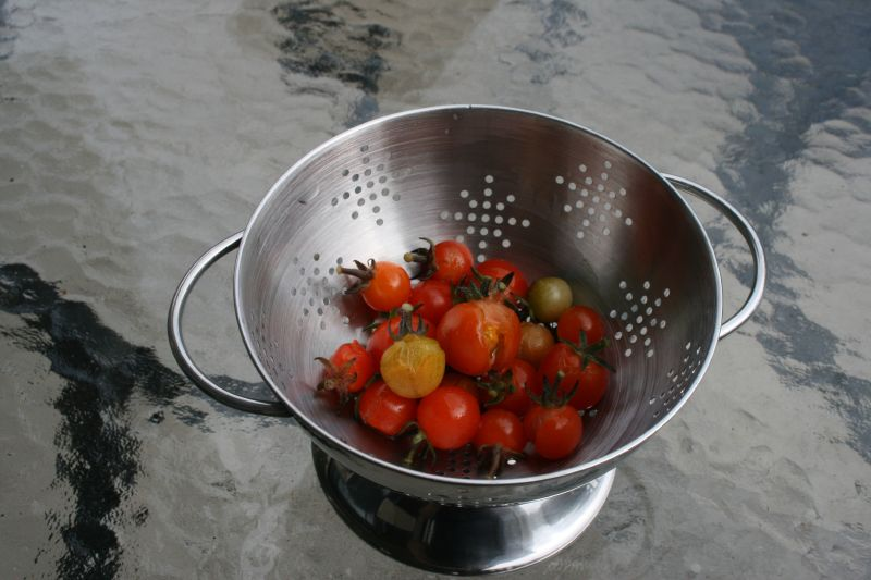 Rain-split tomatoes
