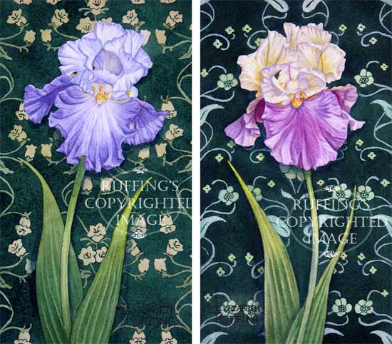 """ER3132 """"Lavender-blue and Cream and Purple Iris on Green"""" Print Set of 2 by Elizabeth Ruffin"""