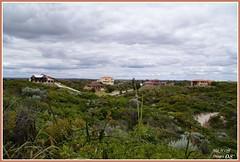 Warnbro Beach 31-10-08 026_signed (ickbar) Tags: bay waikikibeach warnbrosound westernaustraliabeaches