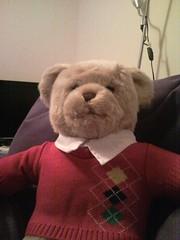 Andrew (Elliott with a Camera) Tags: bear red cute soft teddy fluffy andrew teddybear cuddly jumper buildabear
