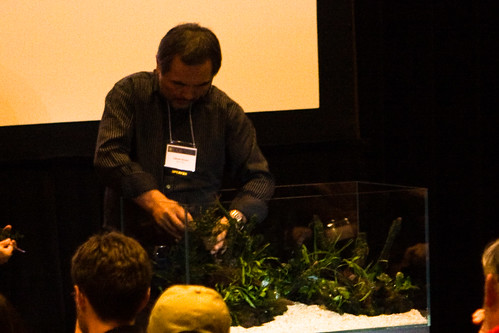 Amano Aquascaping at AGA 2008