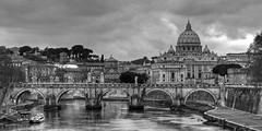 Saint Peters across the Tiber