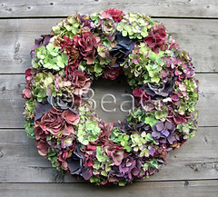 Hydrangia Wreath, front (Hortensiakrans, voorkant) (Made by BeaG) Tags: flowers original creativity artist belgium natural designer oneofakind ooak kunst belgi wreath creation dried unica walldecor hortensia unicum hydrangia couronne tabledecor beag doordecor kunstenares uniquedesign ontwerpster recycledecor originaldesigner creativedesigner designedandmadebybeag uniekontwerp ontworpenengemaaktdoorbeag recyclehomedecor designerwreath designerwreaths
