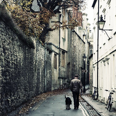 A man, a dog, and a lonely street (edmundlwk) Tags: old uk autumn england dog man canon rebel hotel cross bank oxford lane processing 1750 coventry tamron muted xsi universityofwarwick 450d flickrchallengewinner edmundlim