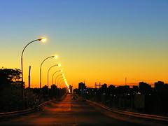 Amanhecer na fronteira (Claudio Marcon) Tags: bridge blue brazil sky colors azul brasil night sunrise cores lights céu colores ponte amanecer luzes cielos vanishing rs riograndedosul amanhecer uruguaiana digitalcameraclub fotoclube omot claudiomarcon claudiolmarconribeiro greatshotss