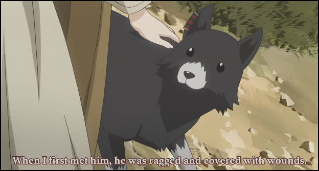 Reflections_by_maygikal.jpg Anime wolf pup image by HikariNoSakura