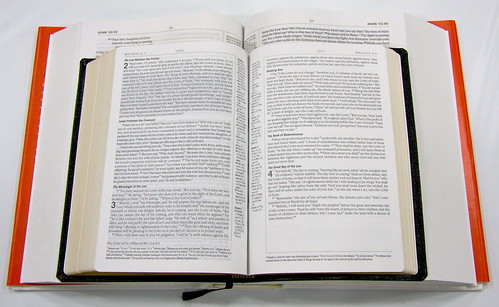 ESV Study Bible Mock-Up 1