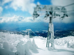 Snow Monsters (Casey Broadwater Photography) Tags: trees winter snow ski ice japan pine lift fake encased monsters miyagi tohoku yamagata zao drift imposter tiltshift lpwinter gettyholidays2010