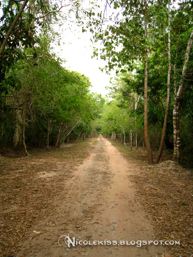 road to east gate at angkor thom