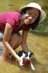 Just Learning to play with water. (CMOS1138) Tags: nemo ratterrier peaceriver puppydog wachulaflorida