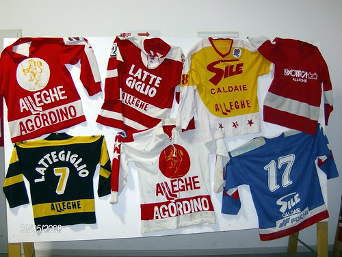Hockey Alleghe - 1933/2008