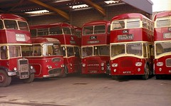 When it was worth being a bus enthusiast. (Renown) Tags: panorama buses titan ok roe coaches leyland massey codurham reliance aec southdown bishopauckland plaxton pd3 northerncounties okmotorservices oktravel pd2a pd3a masseybros charleshroe