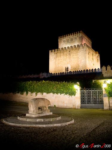 Castillo de Ciudad Rodrigo y el Verraco
