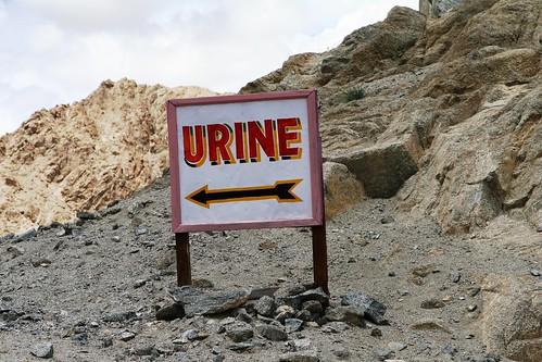 ladakh.june08 223