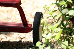 IMG_4297.JPG (kmiche) Tags: red metal tricycle whee sigma70300mmmacro lredtricycle