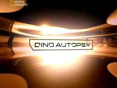 Dino Autopsy