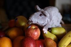 rat gourmet