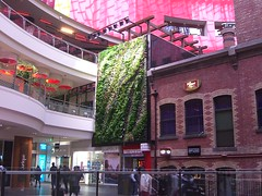 Le Mur Vegetal - Melbourne Central (avlxyz) Tags: art design livingwall thrive patrickblanc verticalgarden melbournecentralshoppingcentre nationaltreeday lemurvegetal