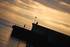 EN PAZ (javierespadas) Tags: amanecer pesca gijon lacalzada platinumphoto playadelarbeyal