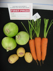 vegetables (squeezemonkey) Tags: vegetables potatoes competition onions carrots entry firstprize tetford