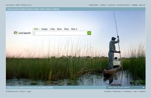 Live Search: New Design