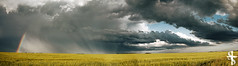 Prairie Panorama (Cody-James) Tags: sky panorama canada storm calgary nature field grass rain weather clouds landscape photography james rainbow nikon skies photographer angle outdoor wide panoramic christian alberta cody nikkor studios raining thunder staredown calgaryalberta txb nikkorlens nikonshooter teamxbox d80 nikkorlenses calgarian christianphotographer calgaryphotographer calgaryphotography panormam calgaryalbertacanada nikonphotographer codyjames cjproductions staredownstudios albertaphotographer albertaphotography codyjamesphotography albertalandscapephotographer codyjamesphoto wwwcodyjamesca calgaryalbertaphotographer nikkorphotographer codyjamesca httpcodyjamesca calgarylandscapephotographer albertaoutdoorphotographer calgaryoutdoorphotographer
